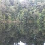 Mirror Tarn
