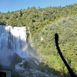 Picture of Marokopa Falls
