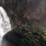 Picture of rock & Tawarau Falls