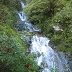 Image of Milford Track water cascades